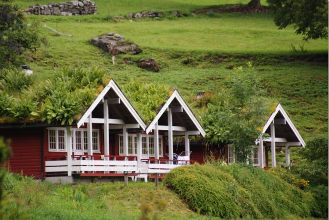 Croisière en Norvège: Habitat écologique