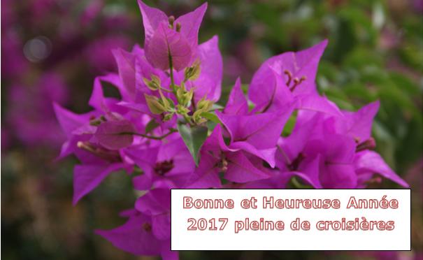 Une bonne et heureuse année de croisières